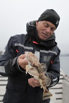 Jeremy Wade inspecting an Irish Lord in Alaska
