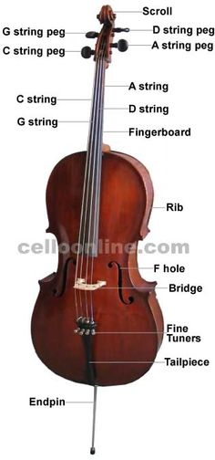 12 More Popular Songs For The Cello That Will Delight ...