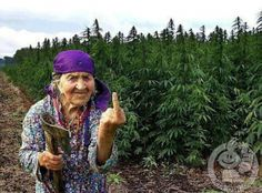 This Albanian woman clearly doesn't appreciate the police attempting to shut down marijuana growing in Lazarat.
