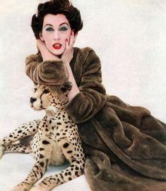 Dovima vestindo um casaco por Borgana 1955