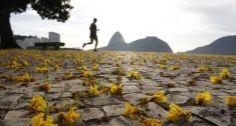Praia de Botafogo foto: Marcia Foletto