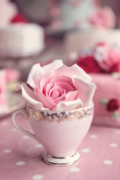 Pink Rose Tea Time