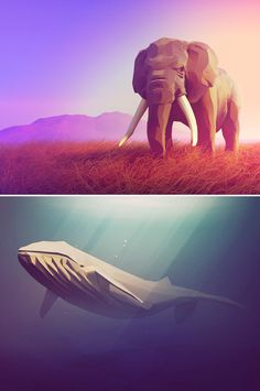 Vector art digital illustrations of animals and nature // 10 low-poly illustrations that'll inspire you to create your own - Digital Arts