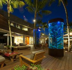 One saltwater tank at Malibu Lumber Yard features the aquatic life of the Pacific Ocean at Malibu, another features the California State fish, the Garibaldi, while the third tank features a collection of stunningly beautiful tropical fish from the South Pacific. #aquarium #tropical