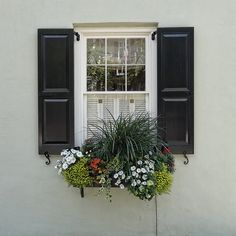 In Charleston's historic district, most houses extend nearly to the sidewalk or street. So, the only visible gardening space people have is window boxes. These boxes of bright flowers have come to. Window Box Flowers, Window Boxes, Flower Boxes, Garden Windows, Bright Flowers, Learn To Paint, Lake View, Shutters, The Great Outdoors
