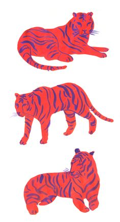 leah reena - red and purple tiger illustration Book Design Graphique, Illustration Design Graphique, Art And Illustration, Animal Illustrations, Illustrations Posters, Disney Art Drawings, Portrait Vector, Posca Art, Art Design