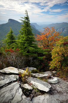 Linville Gorge October View, Hawksbill in the background