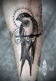 David Hale | Athens, GA | Love Hawk Studios