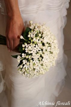 stunning white bouquet of bouvardia.  looks like stephanotis!