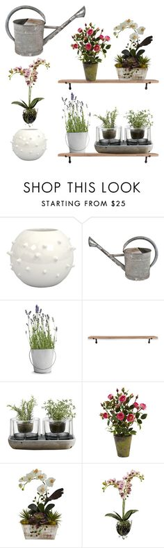 """""""Untitled #505"""" by elizabeth-buttery on Polyvore featuring interior, interiors, interior design, home, home decor, interior decorating, Potting Shed Creations, Garden Trading, Nude and Nearly Natural"""