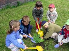 CommunityService.org » Volunteer Ideas for 5 Different Age Groups