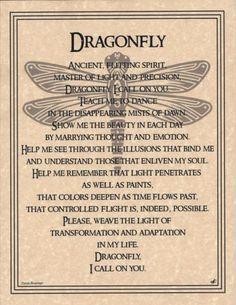 Dragonfly Prayer Animal Spirit Wicca Native American Parchment Poster Art | eBay
