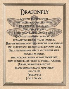 Dragonfly Prayer Animal Spirit Wicca Native American Parchment Poster Art | eBay
