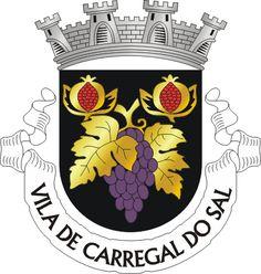 Municipality of Carregal do Sal, Viseu, Portugal (Area Km²) Car Reg, City Logo, Badge Logo, Coat Of Arms, Terra, Continental, Europe, Villas, Badges