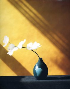 Robert Mapplethorpe - Flowers.  He was the best in Flower photography.