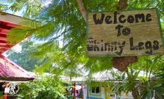 Welcome to Skinny Legs! Coral Bay, St. John #USVI. Love this place. Chickens walking around in the bar and donkeys in the street.