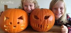 Image result for advanced facial expressions jack o'lanterns