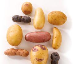 Choisir les variétés de pommes de terre selon les usages