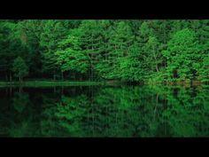 青いだけじゃない!長野のあの池が日本一美しいと言える5つの理由 | RETRIP
