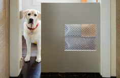 Pocket Dog Door + decorative  screen....this would be brilliant to be able to separate to block off the pup. :)