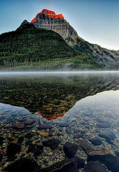 Nature Photography - Comunidade - Google+