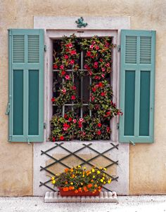 Provence, France by Dave Mills