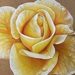 """9,817 Likes, 87 Comments -  Lahar Studios  (@kellylahar) on Instagram: """"Which flower is your favorite!?! #coloredpencil #flower #rose #drawing"""""""