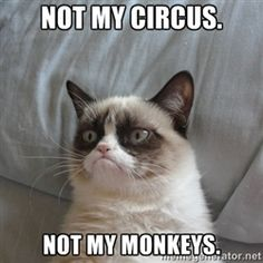 not my circus not my monkeys grumpy cat - This has become my new favorite saying!