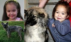 Girl, four, reunited with puppy who kept her alive in Siberian forest