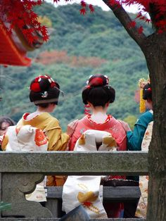 Autumn in Kyoto, Japan. Here we have three maiko (apprentice geisha) admiring the view.