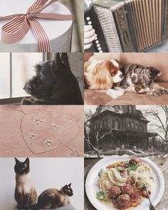 """mushi-and-junior: """" disney aesthetics: Lady and the Tramp """" Look, there's a great big hunk of world down there, with no fence around it. Disney Films, Disney And Dreamworks, Disney Pixar, Drawing Cartoon Characters, Cartoon Drawings, Mickey Head, Disney Aesthetic, Lady And The Tramp, Cute Disney"""