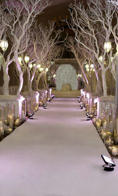 Winter Wedding ● Ceremony Decorations