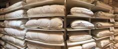 NACHTVORST Toe aan een nieuw dekbed? Wij informeren u graag over onze collectie donzen, wollen en synthetische dekbedden en kussens #BedshopdeDuif #Haverstraatpassage 31 #Enschede
