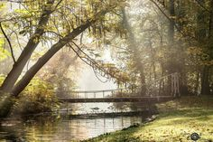 Stunning Sonsbeek Park in the middle of Arnhem. In my opinion one of the Netherlands's most beautiful parks. Picture taken by Elsbeth Hazenberg