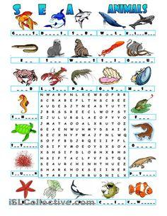 animals - aquatic