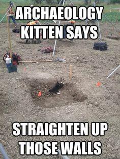 archaeology kitten says straighten up those walls . HAhaha..