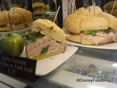 How to eat #Healthy in Walt Disney World! Where to go and what to get! #WDW