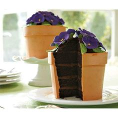 Blooming Flower Pot Cake Isn't it just too precious? This cake is sold through Williams Sonoma stores. It inspired me to make my own flower pot cake, which was a lot of fun! Pretty Cakes, Cute Cakes, Beautiful Cakes, Amazing Cakes, Beautiful Gorgeous, Crazy Cakes, Fancy Cakes, Mini Cakes, Food Cakes