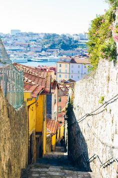 If you're visiting Portugal soon, make sure to stop in Porto for a few days. I'm sharing where to eat in Porto Portugal—hint, it's a foodie town.