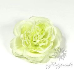 elegante Haarrose/Ansteckrose in hellgrün, Ø 12 cm von Boutique für wundervolle Accessoires zum Liebhaben! auf DaWanda.com