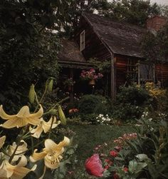 cabin garden