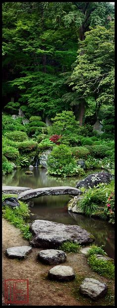 You can use your backyard pond for spending quality family time and have evening tea. The good thing about the backyard pond is that gurgling waterfalls are very much attractive and appealing. So if you haven`t decided on having a pond you must do it now. Beautiful Landscapes, Beautiful Gardens, Asian Garden, Water Features In The Garden, Dream Garden, Outdoor Gardens, Zen Gardens, Water Gardens, Garden Bridge