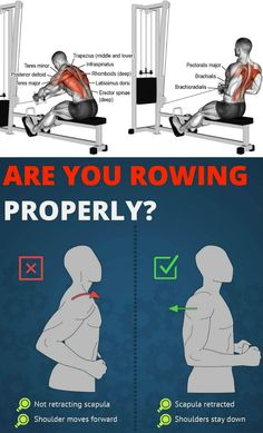 Great for weight loss, toning and building muscles, and increasing stamina, this machine is a fitness game changer. Rowers work out several major muscle groups and will help you develop both your. Rower Workout, Aerobics Workout, Gym Workouts, Workout Kettlebell, Weight Machine Workout, Latissimus Dorsi, Major Muscles, Weight Training, Build Muscle