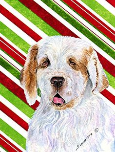 Caroline's Treasures SS4569CHF Clumber Spaniel Candy Cane Holiday Christmas Flag Canvas, Large, Multicolor >>> Remarkable product available now. : Garden Christmas Decorations