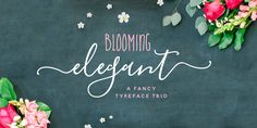 Blooming Elegant - Webfont & Desktop font « MyFonts
