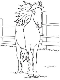 horses coloring page - Coloring Pages Dogs Horses