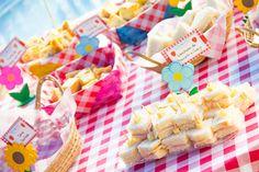comidas festa picnic