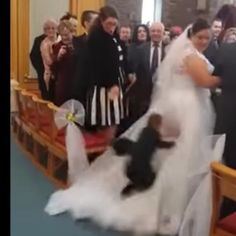 Ring Bearer Thought Wedding Dress Was A Cloud So He Dove Into It