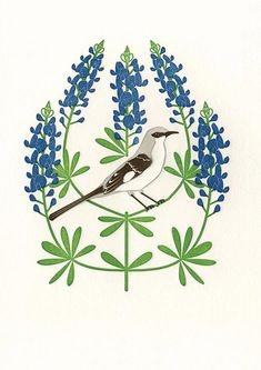 Birds & Blooms of the 50 States by Anna Branning & Mara Murphy