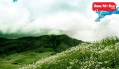 Eastern India is sadly less explored than parts of the country and yet the place has countless destinations that will leave you mesmerised with their sheer beauty and picturesque surroundings. Visit this beautiful place during summer to enjoy the variety of flowers that bloom through the valley. Book your tickets to Dzukou Valley @ http://www.bookmybus.com/